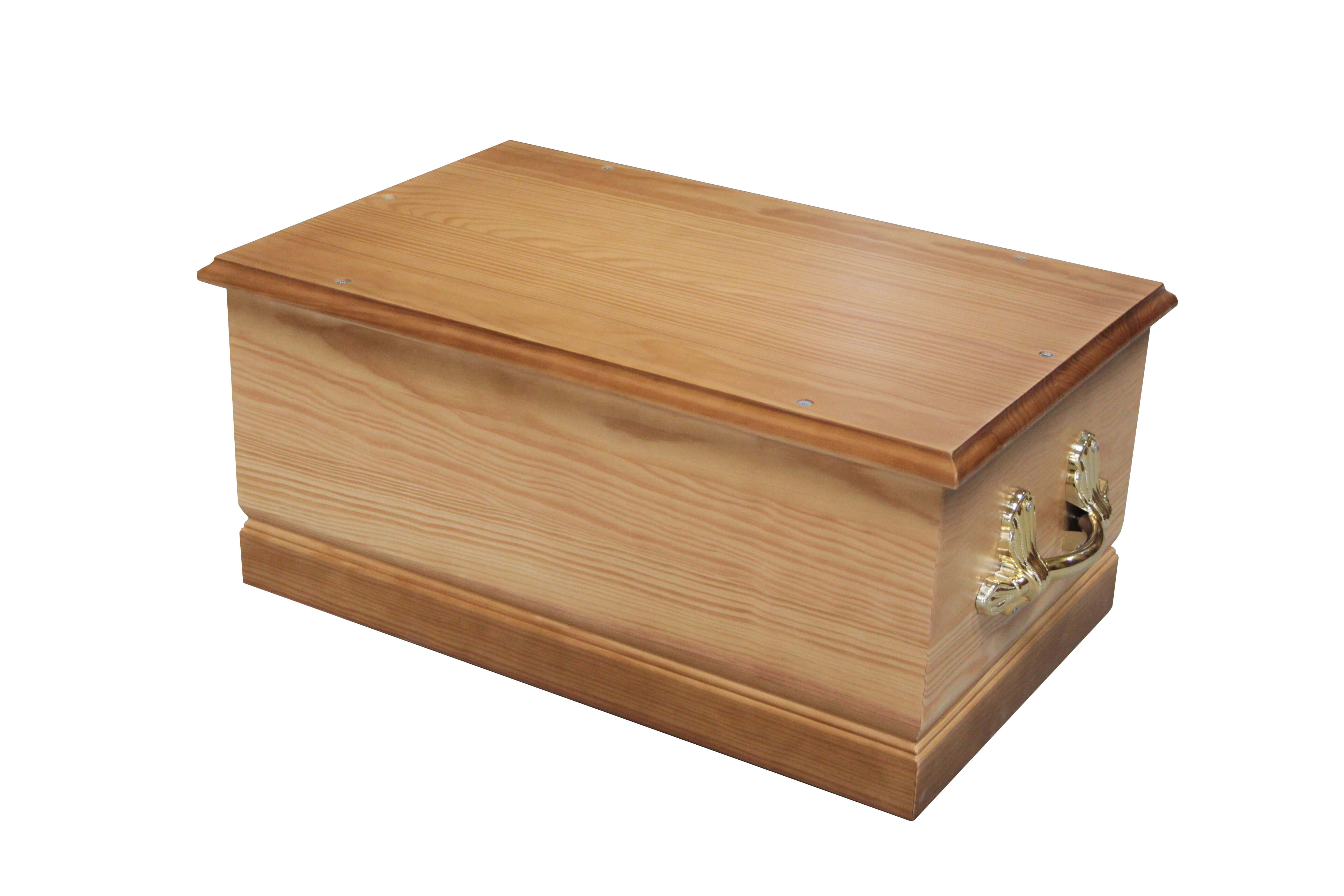 cercueil chien